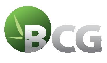 Công ty cổ phần Bamboo Capital