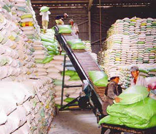 Thị trường đang có lợi cho xuất khẩu nông sản