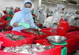 Tháng 8, tổng sản lượng thủy sản tăng 4,3% so với cùng kỳ năm 2009