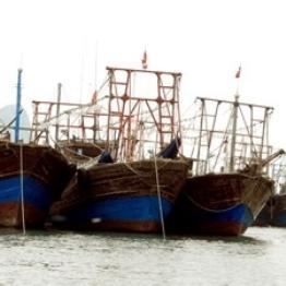 Cà Mau phát triển đoàn tàu cá khai thác xa bờ