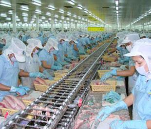 10 nước gửi danh sách cơ sở thủy sản cho Việt Nam