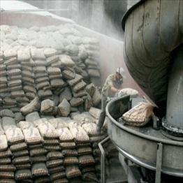 Tiêu thụ xi măng của Indonesia sẽ tăng 10% trong năm 2011