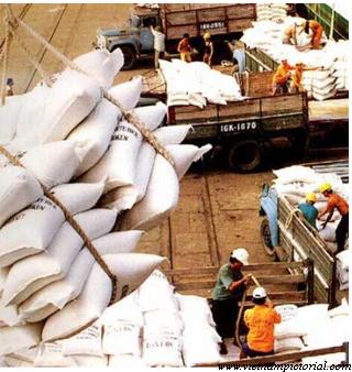ĐBSCL: Lũy kế đến nửa đầu tháng 10 đã xuất 5,2 triệu tấn gạo